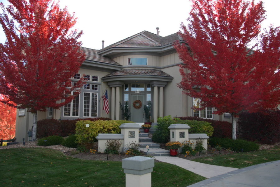 Entrance to tan house with two red maple trees